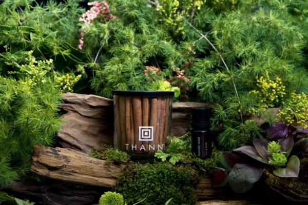 Ароматический диффузор-набор Aromatic Wood